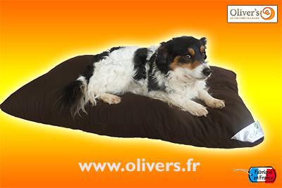 Promotion coussin chien
